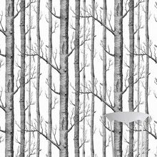 Woods sort/hvid - tapet med træer. SE FRAGTPRISER Flot og stilrent tapet med nøgne sorte træer på hvid baggrund fra engelske Cole & Son, et elegant tapet der giver væggen et enkelt og moderne look.