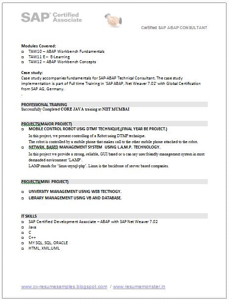Resume Of Sap Mm Training Modules - Vision professional