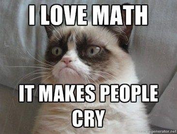 Even Grumpy Cat Likes Math. Grumpy Cat #GrumpyCat #Humor #Meme
