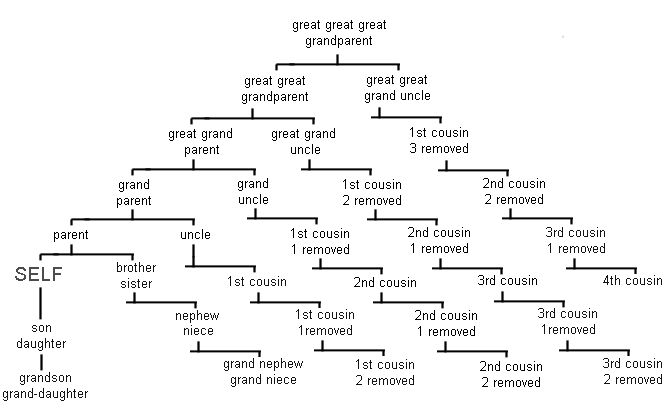 Family Tree Relationship Chart