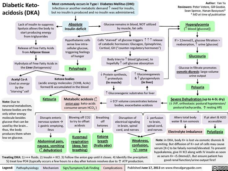 Diabetic Ketoacidosis (calgaryguide.ucalgary.ca).