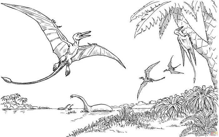 Quetzalcoatlus Dinosaur Coloring Page Dinosaur Coloring Dinosaur Coloring Pages Dinosaur Coloring Sheets