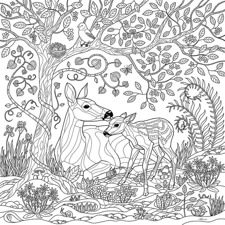 Deer Fantasy Forest Coloring Page Crista