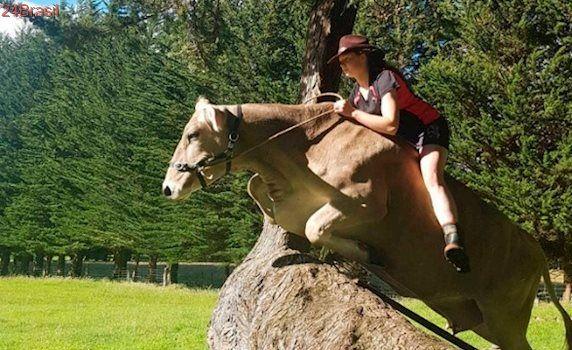 Sem consciência: menina força vaca a praticar saltos de obstáculos de 1,4 metros