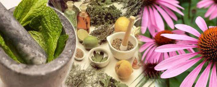 Il termine Fitoterapia deriva dal greco phyton (pianta) e therapeia (cura) ed è assolutamente la prima forma di medicina impiegata dall'uomo. Si tratta quindi della cura e la prevenzione della malattia attraverso la somministrazione di medicinali a base naturale.