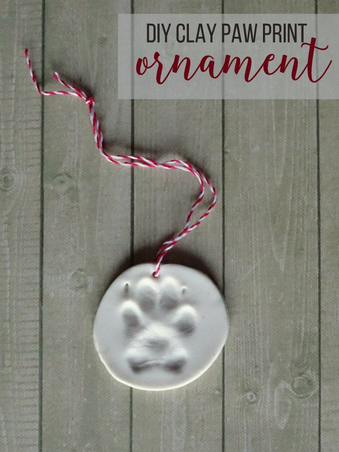 DIY Clay Paw Print Ornament (Probably a tad more difficult to get a cat to cooperate for this one...)