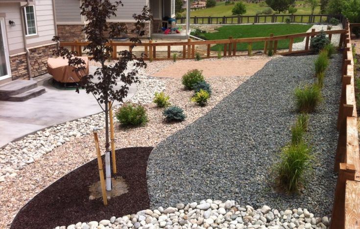 Backyard landscape ideas for drought drought for Low maintenance front garden