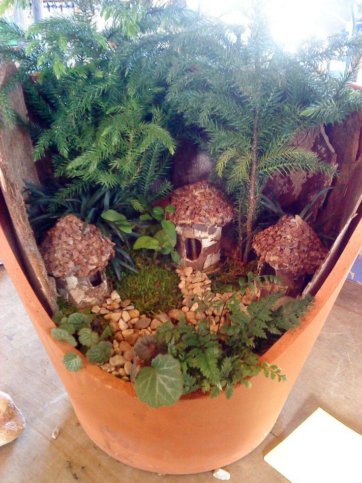 Fairy Container Gardens Images