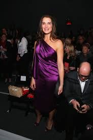 Image from http://media3.popsugar-assets.com/files/2013/02/06/6/192/1922398/9819691ee7deefeb_161166482_10/i/Brooke-Shields-wore-purple-Son-Jung-Wan-show-NYC-February.jpg.