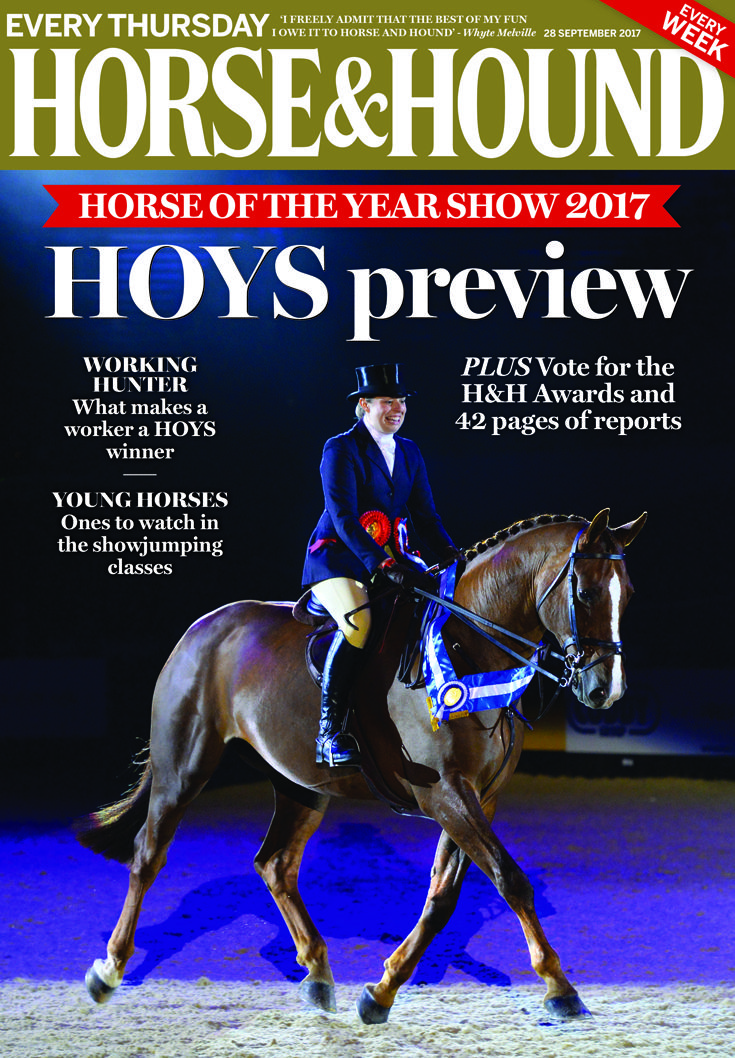 This week's issue of Horse & Hound, on sale Thursday 28 September, is our HOYS preview and we unveil who has made the shortlist for the H&H Awards...
