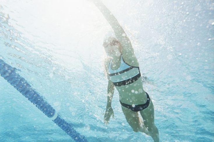 ¿Puedes perder grasa corporal practicando la natación?. La natación sigue siendo un de los mejores ejercicios de recorrido para gente que busca perder grasa corporal. Puedes quemar más de 800 calorías, dependiendo de tu peso corporal en una hora de natación vigorosa. Si también vigilas tu dieta ...