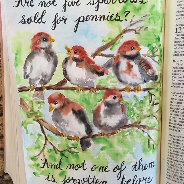 Have you ever had the experience when you read a very familiar scripture and it pierces your heart like it never has before? That happened to me this morning when I read Luke 12:6. Jesus was talking to his disciples (and me) and told them how much he valued them. The sparrow is so common that five are sold for two pennies and yet Jesus said that he doesn't forget one of them. He went on to say that he has every hair on our heads numbered. Of course he values us so much. He laid down his life…