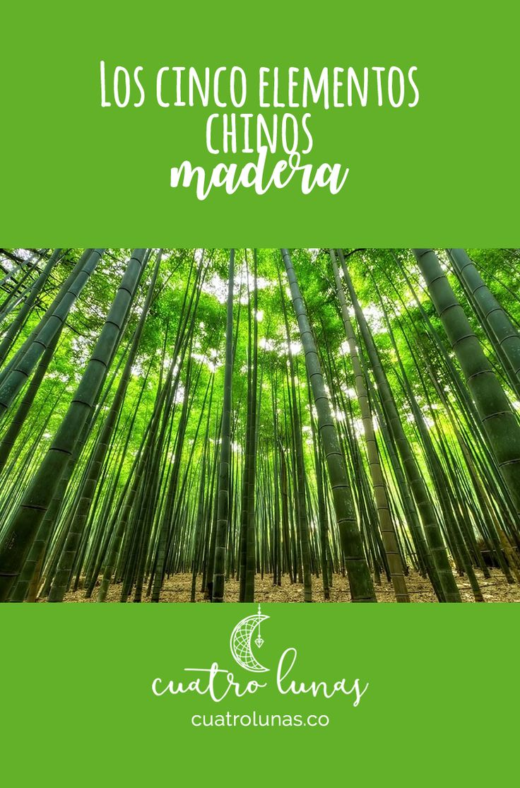 Desde la tradición china la madera es el elemento que representa la estructura en la vida.