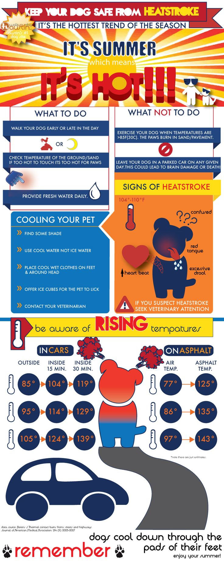 keep your dog safe from heatstroke -