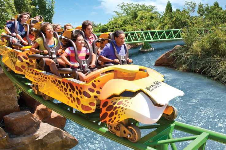 Sprint across the Serengeti Plain at the speed of the fastest animal on Earth on Cheetah Hunt.