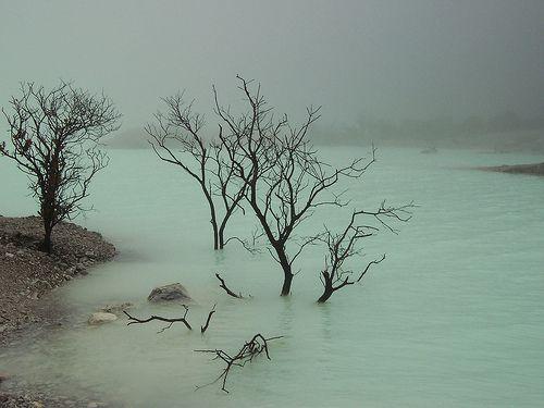 Kawah Putih, Ciwidey, Indonesia