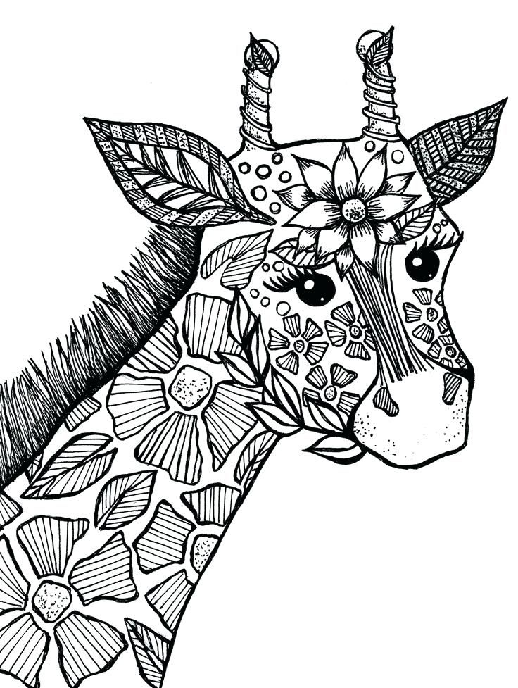 Animal Coloring Pages in 2020 Giraffe coloring pages