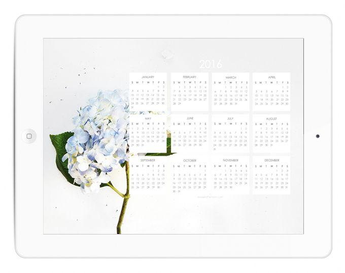 Happy 2016 + 2016 Calendar Blue Hydrangea Desktop Wallpaper (Free Download)   a sweet afternoon