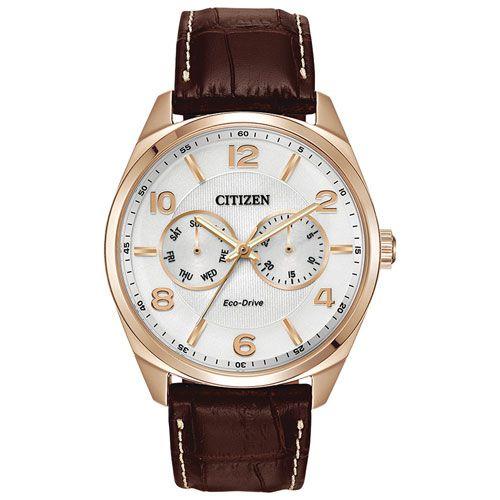 Citizen Dress 43mm Men's Analog Solar Powered Dress Watch - Brown/White/Gold : Mens Watches - Best Buy Canada