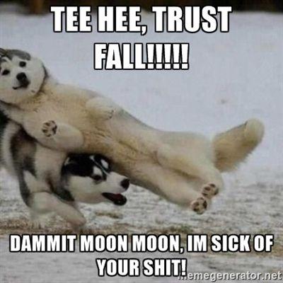 Moon Moon Trust Fall | Meme Generator