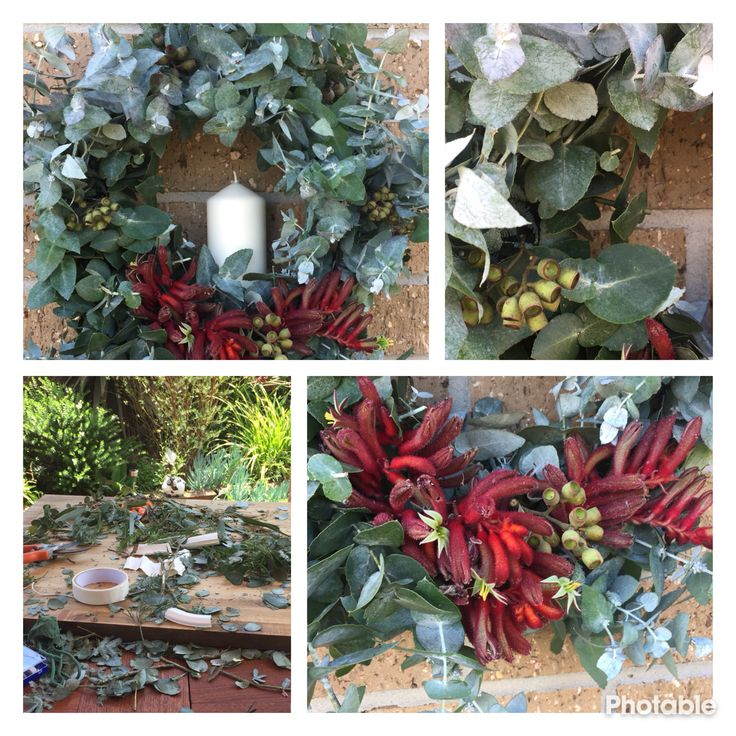 Christmas wreaths creation using Australian flora
