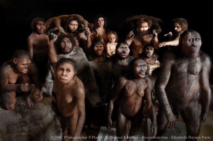 Erken İnsan Türleri Arasında Çiftleşme – Evrim Ağacı