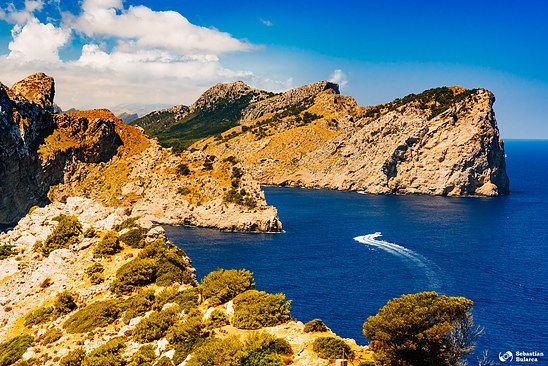 Punda de'n Tomas, Cabo Formentor, Mallorca