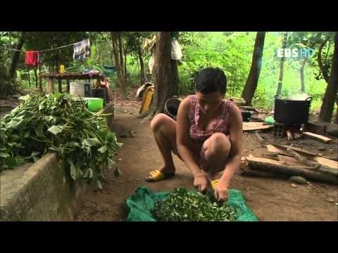 세계테마기행 베트남 3부   역사가 남긴 유산