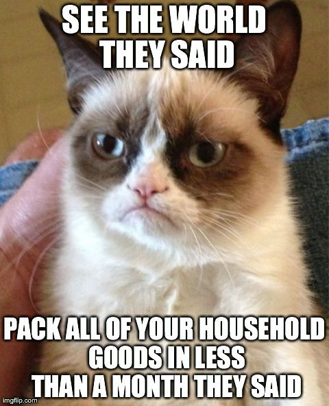 """""""You're Gonna Hate That Place!"""" And Other Things You Don't Want To Hear During a PCS #milspouse #GrumpyCat #PCS"""