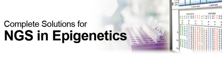 Complete Solutions for Next Generation Sequencing including 5mC DNA Bisulfite Sequencing, MeDIP Sequencing, ChIP Sequencing, 5mC RNA Bisulfite Sequencing.