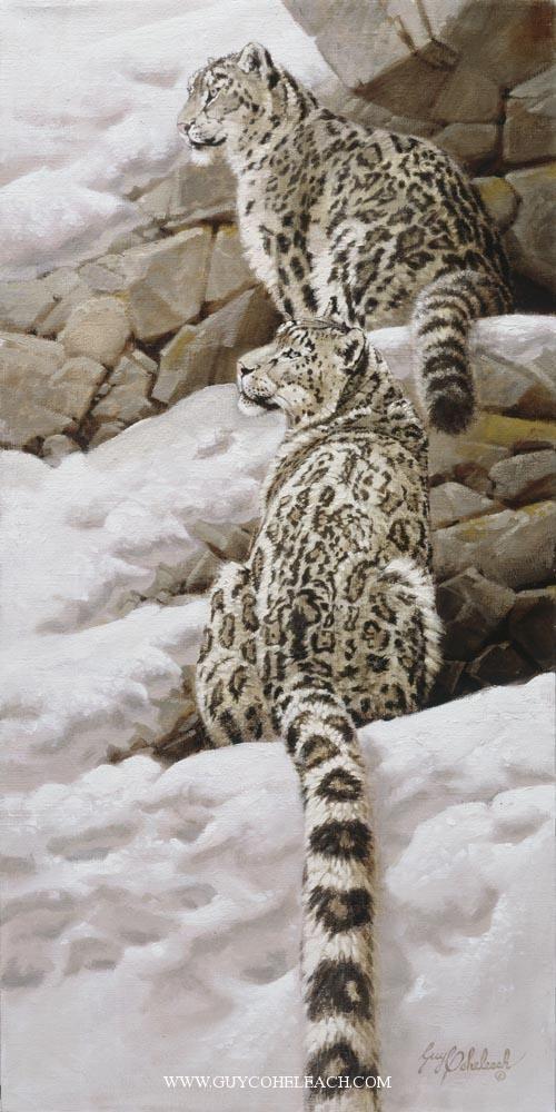 """Snow Leopards"".  Guy Coheleach."