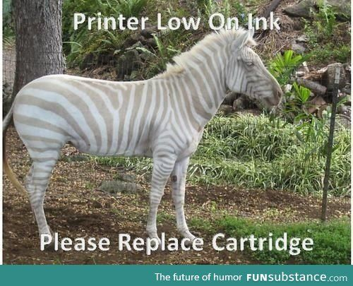 Low on ink, please replace cartridge!