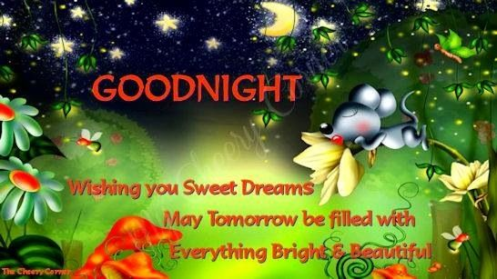 1000 Images About Sweet Dreams Goodnight On Pinterest