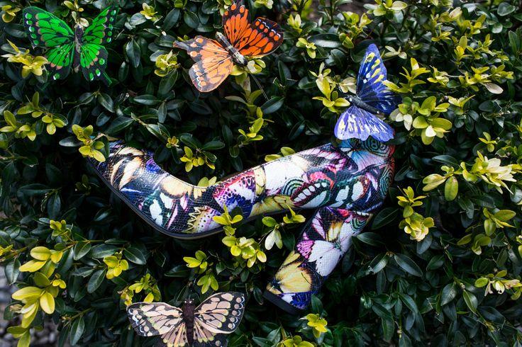 Garkony Butterflies