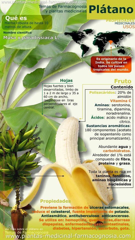 Características y propiedades del platano - Infografías y Remedios. #infografia #infographic #platano #bananna