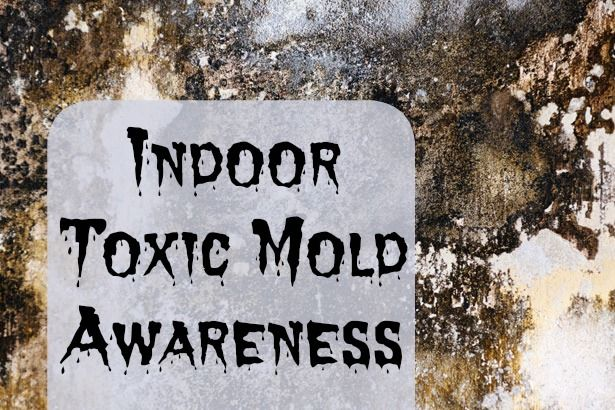How to deal with indoor mold - Toxic mold awareness and tips.