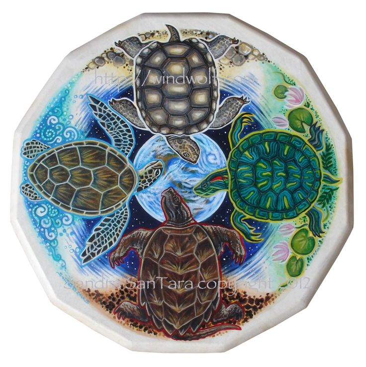 Turtle Island Totem Shield