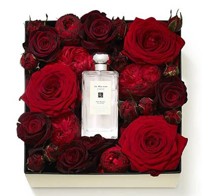 Harrods of London Valentine's Day special with Jo Malone fragrance and surrounded by roses