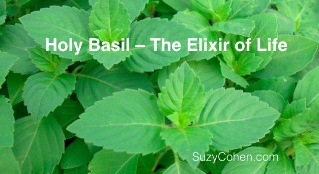 Holy Basil Helps Sleep