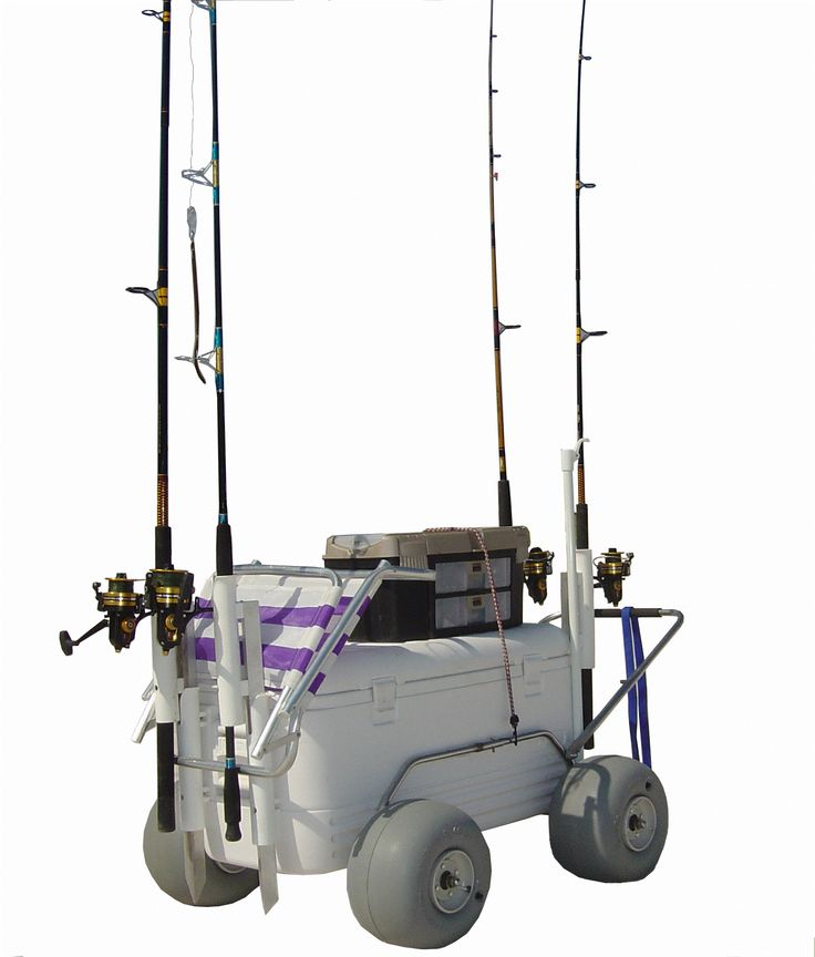 Some of you go fishing as you love to do so, while others may do it  as it give you time to spend in fresh air. Similarly, many go to fishing just to spend some quality time with your friends and family http://www.mybestbuypro.com/fishing-cart/