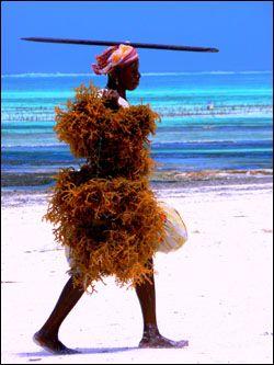 Encounter with local #BeachGirl