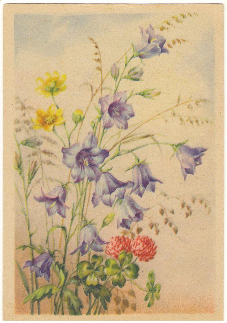Мой, фото старые открытки с цветами