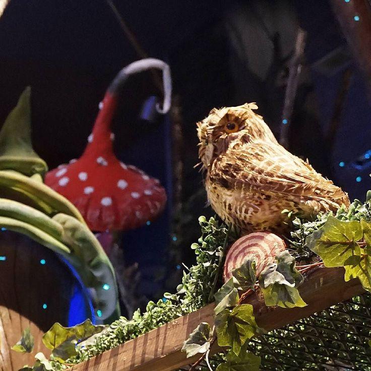 At CapCap Athens today :) @capcapgr #capcap #harrypotter #owl