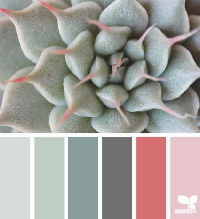 Succulent Tones - http://design-seeds.com/index.php/home/entry/succulent-tones7