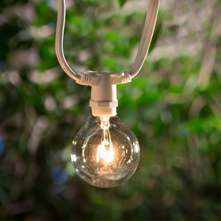 Bulbrite STRING15/E12 25 ft. Outdoor String Light with Incandescent Bulbs…