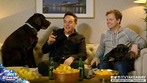 Hurley, ant ,dec and rocky