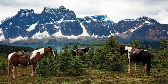 Top 10 camping spots in Canada - Columbia Icefield Campground, Jasper National Park of Canada, Alberta - complete with an interactive glacier gallery and a snow coach for riding the glacier.