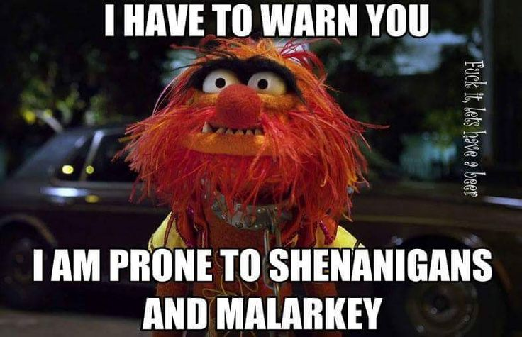 Shenanigans and melarky. Why did we ever stop using those words? !