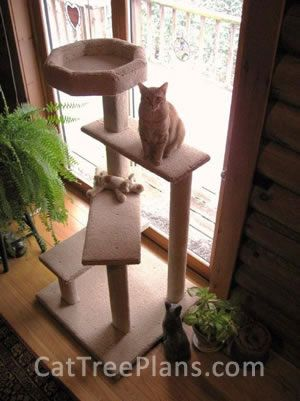 Best 25+ Cat climber ideas on Pinterest | Cat trees, Cat towers ...