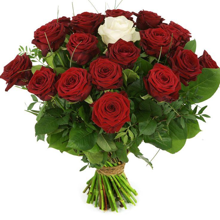 Boeket rode rozen met één witte roos. Geef iemand dit prachtige boeket cadeau! Thuiswinkel Lid. Vers garantie. Snel bezorgd. BoeketCadeau.nl